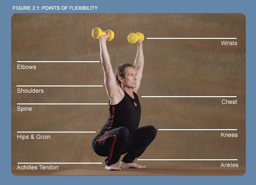 points of flexibility